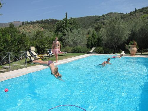 Diving into The pool at Villa degli Olivi